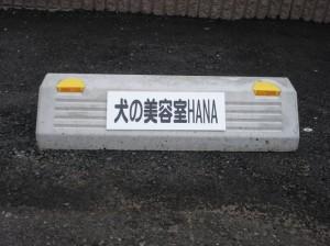 20090903s